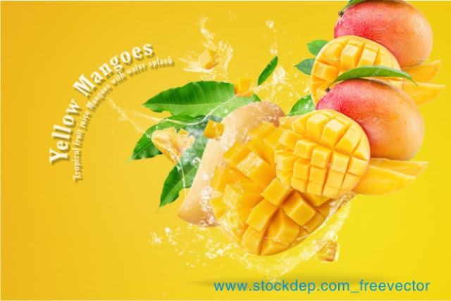 Mango fruit with mango cubes and slices isolated on download free