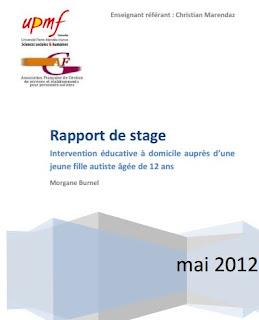 rapport de stage d'observation licence