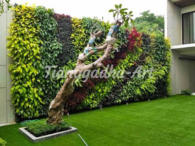 pembuatan taman dinding