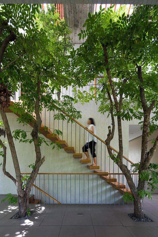 nội thất ngôi nhà như một khu rừng nhiệt đới