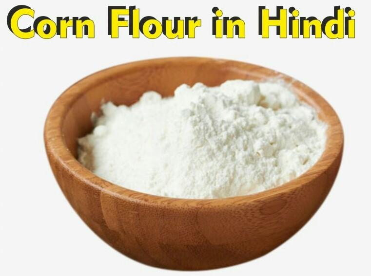 Corn Flour In Hindi || Corn Flour meaning IN Hindi 2021 कॉर्नफ्लोर क्या है