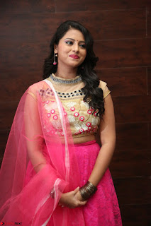 Geethanjali sizzles in Pink at Mixture Potlam Movie Audio Launch 034.JPG