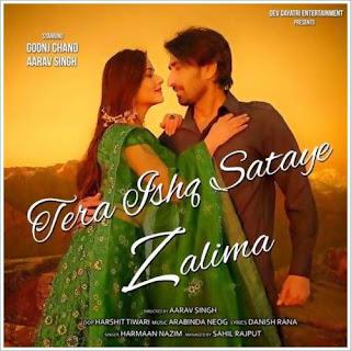 Tera Ishq Sataye Zalima (2019) Indian Pop MP3 Songs