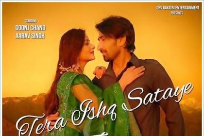 Tera Ishq Sataye Zalima (2019) Indian Pop