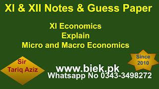 Explain Micro and Macro