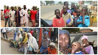"""""""Go to Igbo land and beg, Stop begging in Maiduguri or we'll arrest you all"""" - Police Bans Street beggar in Borno"""