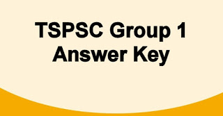 TNPSC-Group-1-Answer-Key-Prelims-Mains-Old-Solved-Papers-Download-in-pdf