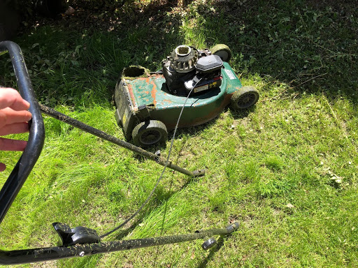 grass and lawn mower maintenance