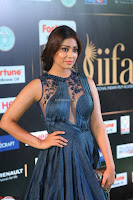 Shriya Saran in Beautiful Transparent Dark Gown IIFA Utsavam Awards 2017 018.JPG