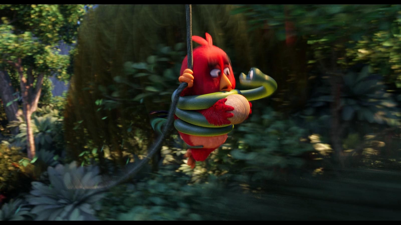 Angry Birds La Pelicula (2016) 1080p BD25 2D y 3D 1