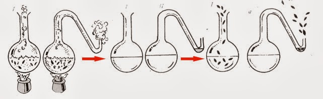teori Louis Pasteur