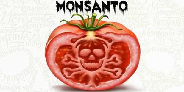 Los 12 productos más peligrosos creados por Monsanto
