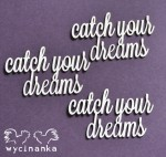 http://wycinanka.net/pl/p/CATCH-YOUR-DREAMS-napisy-catch-your-dreams-/4822
