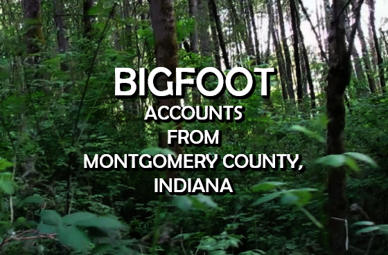 Bigfoot Accounts From Montgomery County, Indiana