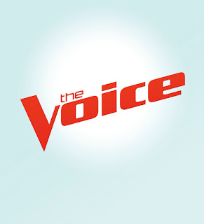 Video: chatting with Josh, Billy and Brendan from Team Adam on 'The Voice'