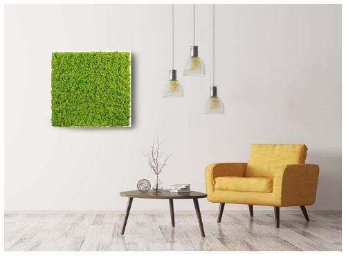 quadro-verde stabilizzato