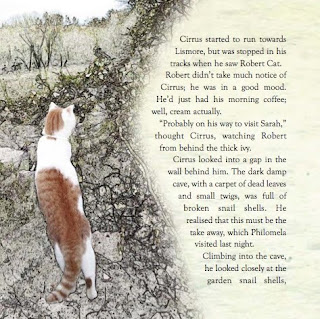 page from Cirrus Chronicles by Corina Duyn www.corinaduyn.com