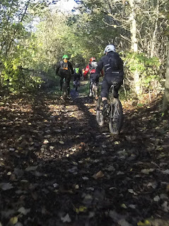 Mountain bike cycling, through the trees