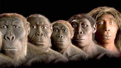 maymundan mı geliyoruz, maymun ve insan