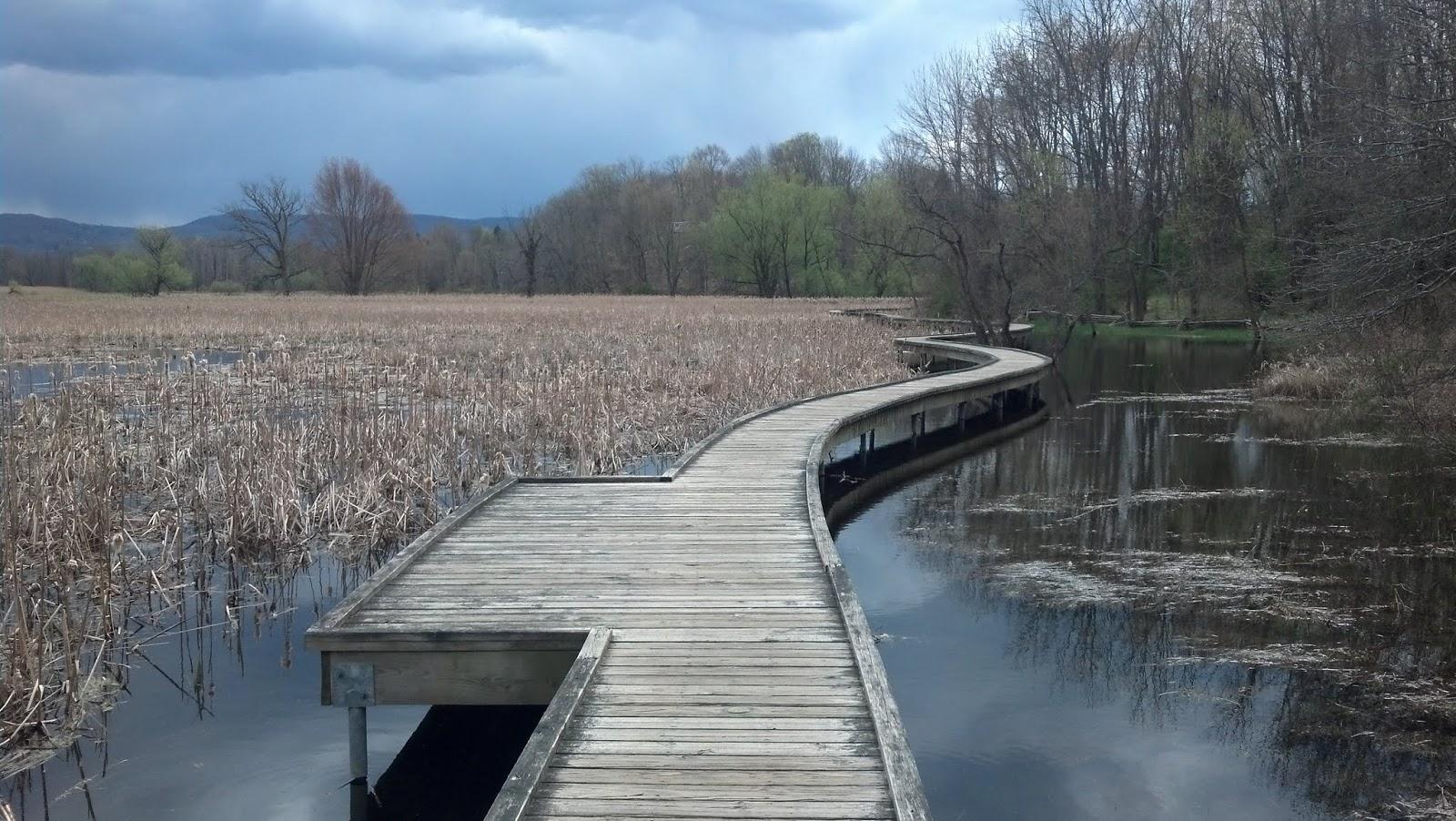 Дорожка Почак - Нью Джерсийские болота (Pochuck boardwalk, Vernon, NJ)