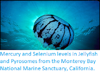 https://sciencythoughts.blogspot.com/2019/01/mercury-and-selenium-levels-in.html