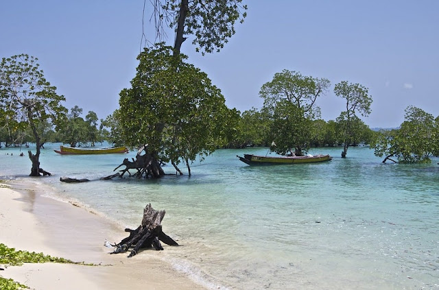 Neil Island, Best Places to visit in Andaman & Nicobar
