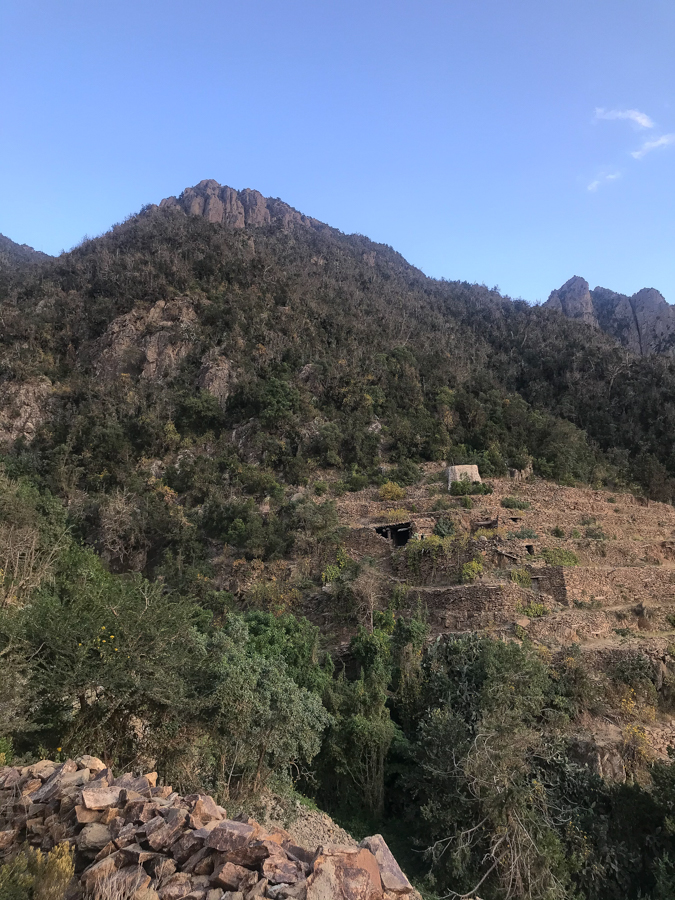 Raydah Farm
