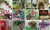 20+ Προτάσεις για κήπο-μπαλκόνι με Γεράνια