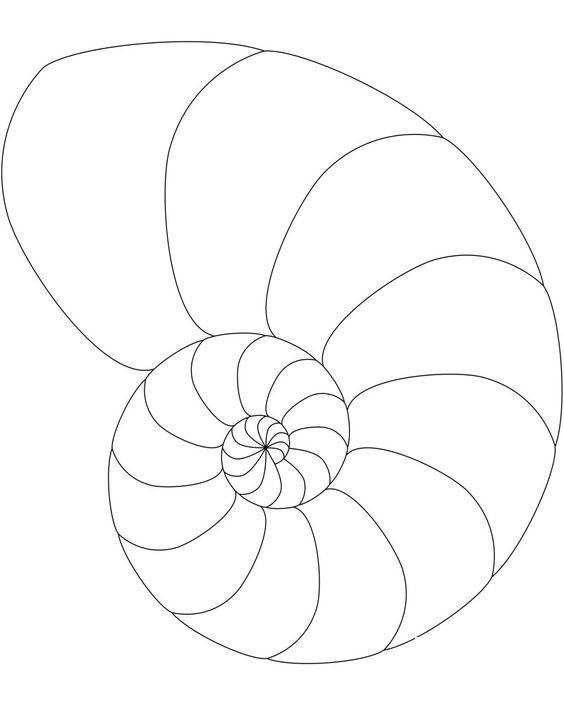 Hình tô màu con Ốc tròn