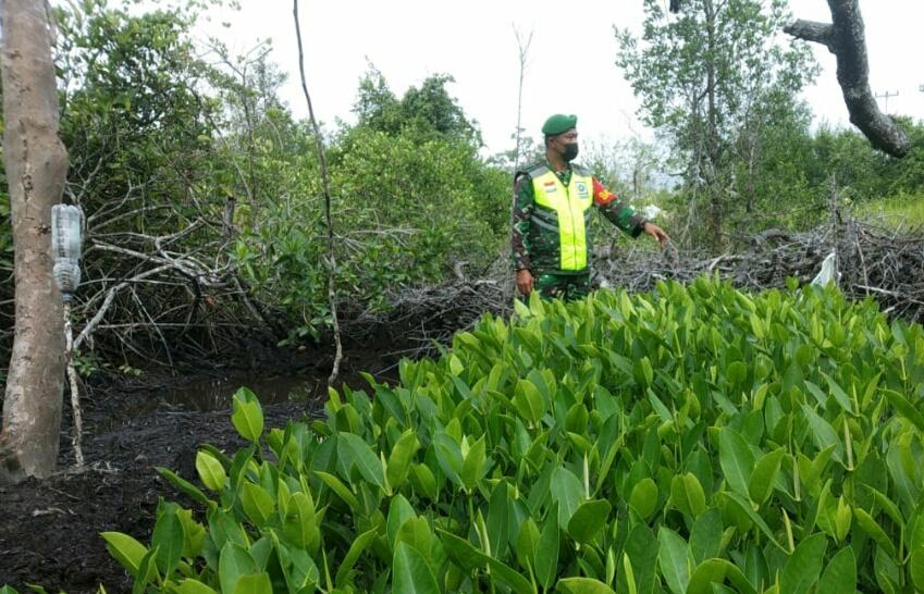 Babinsa Kelurahan Bandarsyah Laksanakan Komsos Bersama Warga Penyedia Binit Mangrove