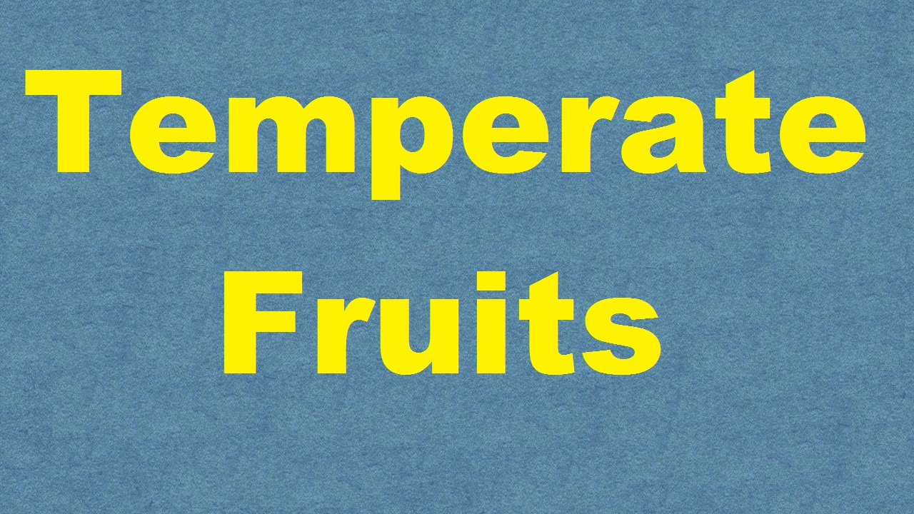 Temperate Fruits ICAR E course Free PDF Book Download e krishi shiksha