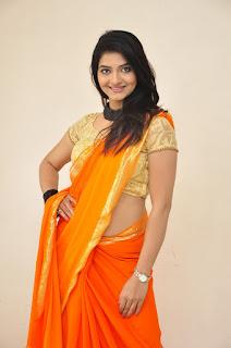 Actress Kashmira Kulkarni Stills in Saree at Drishya Kavyam Movie Success Meet  0018.jpg