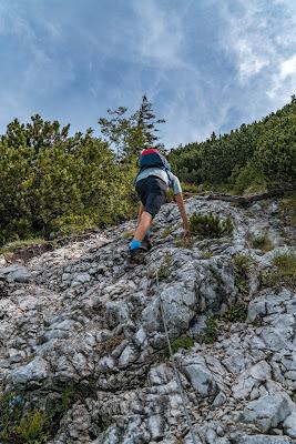 Gamsknogel und Kohleralm  Bergtour Inzell  Wanderung Chiemgauer Alpen 12