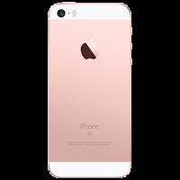 Apple iPhone SE (rear)