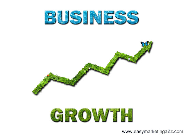 Business Growth 6
