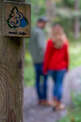 Drei-Täler-Tour und Stadtrundgang Bad Harzburg  Wandern im Harz  Eckerstausee - Radauwasserfall 17
