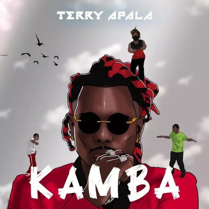 DOWNLOAD MP3: Terry Apala – Kamba