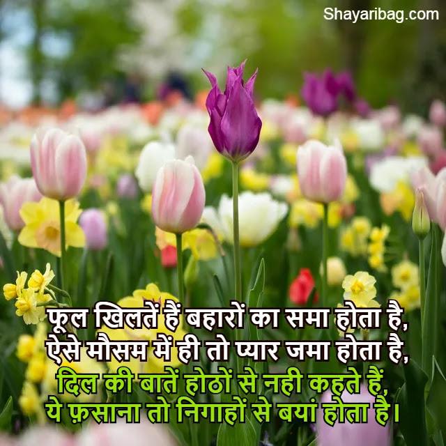 Love Shayari Images HD Download