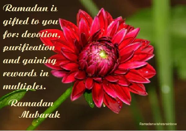 Ramadan best greeting 50