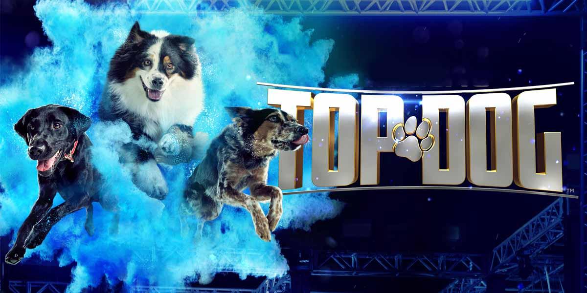 top dog tv show