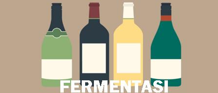 √ FERMENTASI ALKOHOL: Sifat, Manfaat, Proses, Faktor Mempengaruhi