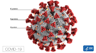 corona virus image East Timor Leste COVID-19