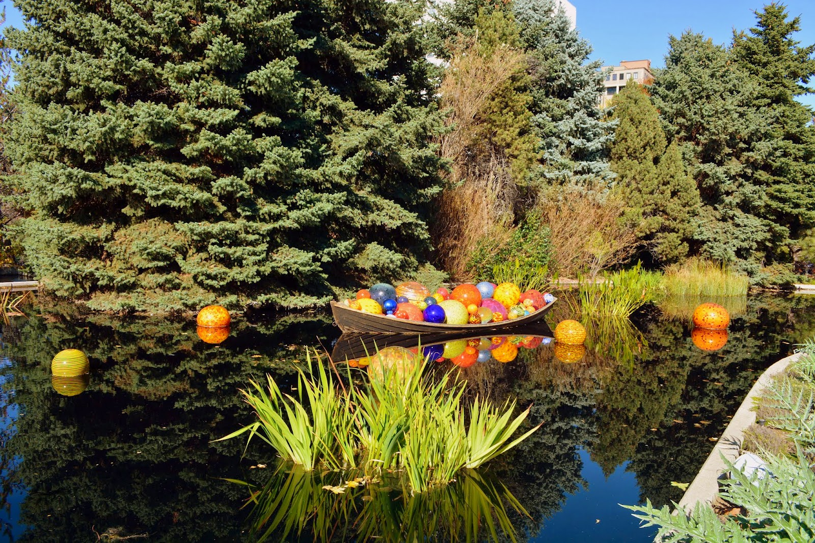 Mille Fiori Favoriti: Chihuly Exhibit at the Denver Botanic Garden
