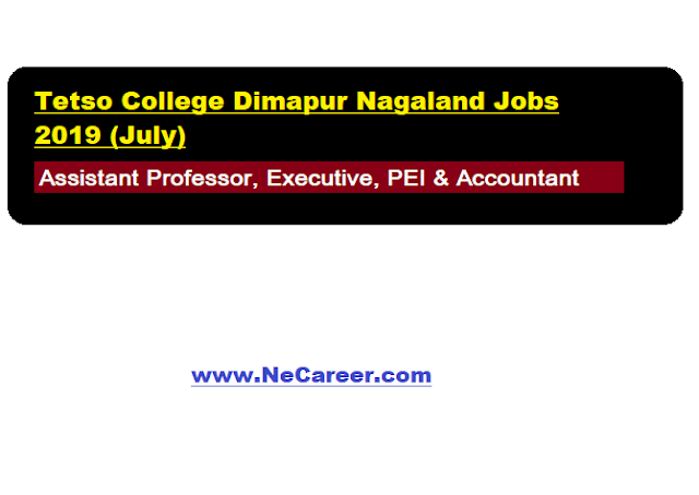 Tetso College Dimapur Nagaland Jobs 2019 (July)