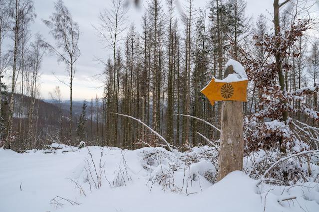 Winterwandern in Bad Harzburg | Kleiner und Großer Burgberg und Besinnungsweg | Baumschwebebahn | Wandern im Harz 18