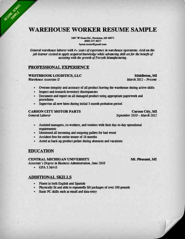 great free resume templates first job resume template job resume template free job resume free great resume templates business resume template resume - Template Of A Resume