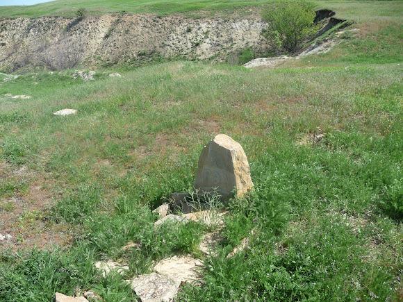 Алексеево-Дружковка. Кладбище домашних животных на территории геологического памятника «Дружковские окаменевшие деревья»
