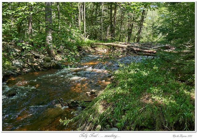 Tully Trail: ... swashing...
