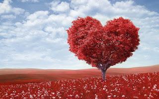 cute heart sape tree whatsapp dp hd image