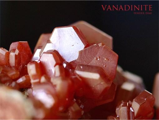 バナジン鉛鉱 バナディナイト Vanadinite Mibladen mine morocco